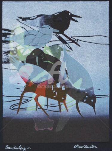 Sanderling 1