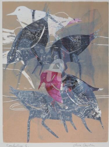 Sanderling 5