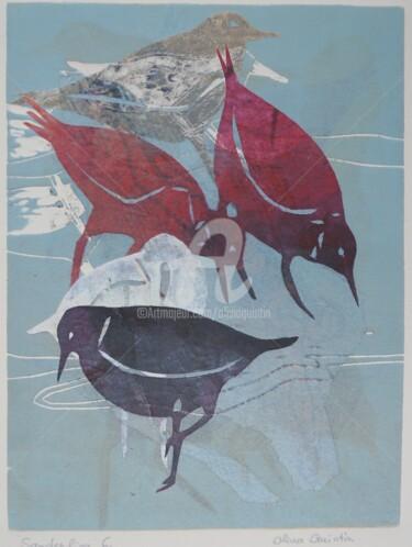 Sanderling 6